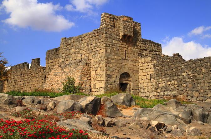 The Umayyad Dynasty ( Desert Castels )